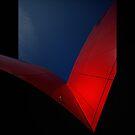 red wings by rita vita finzi