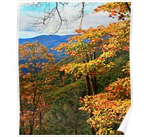 VIEW,BALSAM MOUNTAIN Poster