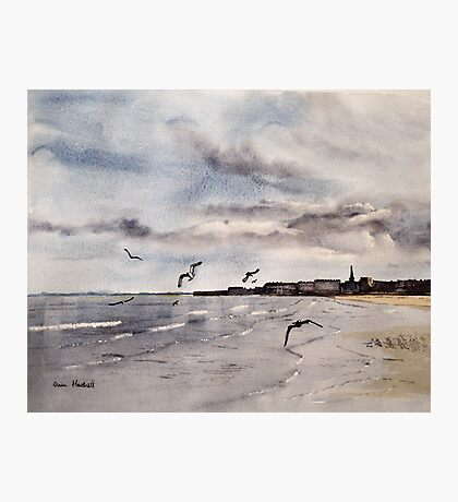 Sand, Sea and Gulls Photographic Print