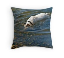 Underwater Search and Rescue Throw Pillow