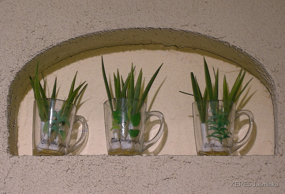 three glass cups of oions by KERES Jasminka