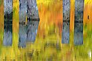 Reflecting On Autumn. by Todd Rollins