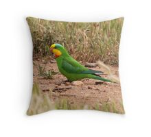 Superb Parrot Throw Pillow