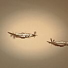 Old Warbirds by jskouros
