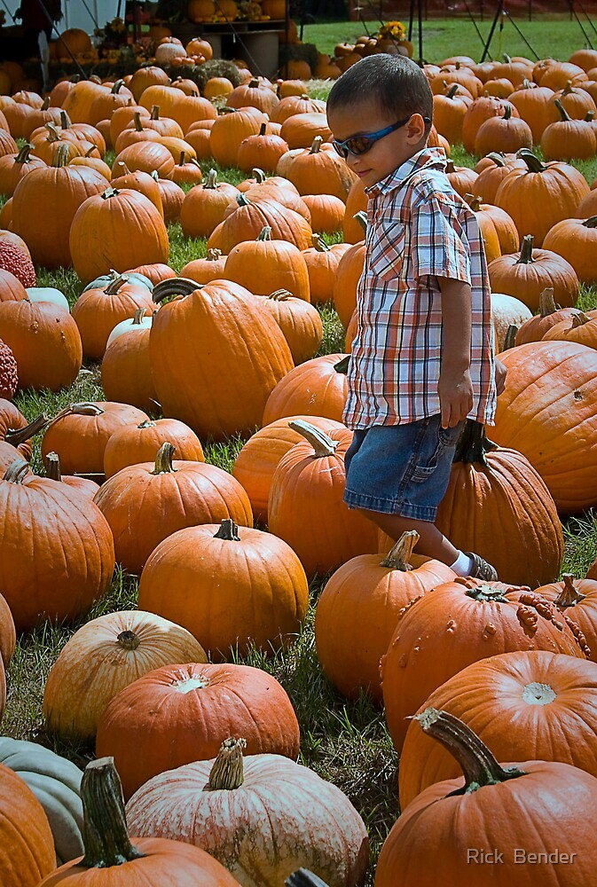 search for THE GREAT PUMPKIN by Rick  Bender