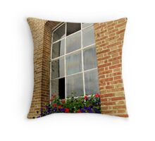 A few missing panes Throw Pillow