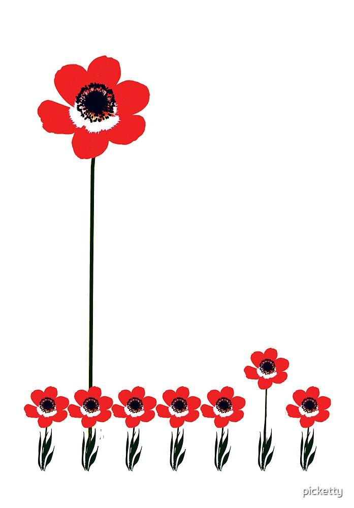 Tall Poppy by picketty