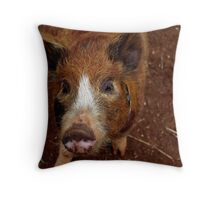 Mr Hamish Throw Pillow