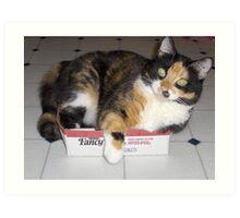 cat-in-a-box Art Print