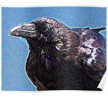 Profile of a Raven . Digital Interpretation Poster