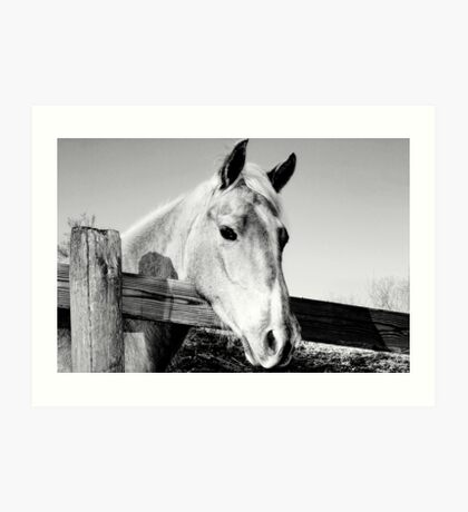 Geronimo in Black and White Art Print