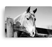 Geronimo in Black and White Canvas Print