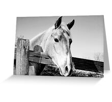 Geronimo in Black and White Greeting Card
