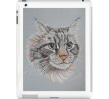 """Romeo Maine Coon Cat"" iPad Case/Skin"
