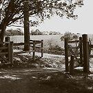 gateway to the Briars by Karen E Camilleri