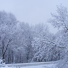 Brr . . . The Road To Winter Wonderland by IrishEyes0
