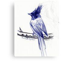 Asian Paradise Flycatcher Canvas Print