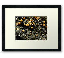 The Hidden Land – A Field of Golden Boulders Framed Print