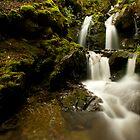 Hidden Falls in Arthur's Pass National Park by Greg  Sorenson