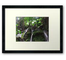 Green Glade Framed Print