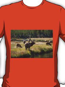 Bull Elk - Yellowstone T-Shirt