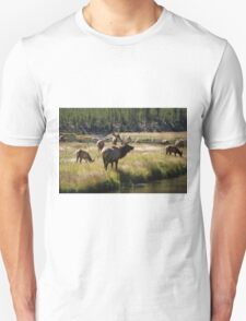 Bull Elk - Yellowstone Unisex T-Shirt