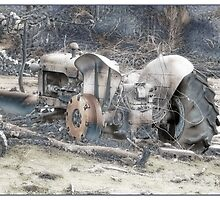 Old Tractor by Elaine Game