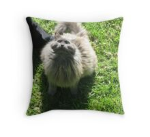 And Your Problem Is? Throw Pillow