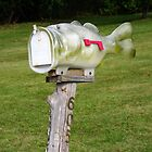 Mail Catcher... watch your hands.. by Larry Llewellyn