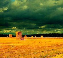 Harvest - Seaton Ross by charlylou