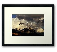 The Soar, the Hunt and the Mind reaches. Framed Print