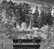 Park Bench and Pond Landscape in Infrared Black and White  by BrookeRyanPhoto