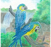 Blue and yellow maccaw-oilpastels by Gordon Pegler