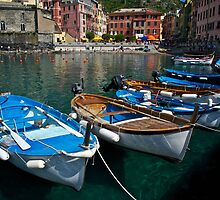 Boats in Vernazza by Bruce Alexander