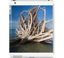 storm damage iPad Case/Skin