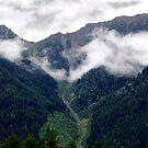 Wilderness Valley by Jann Ashworth
