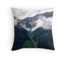Wilderness Valley Throw Pillow