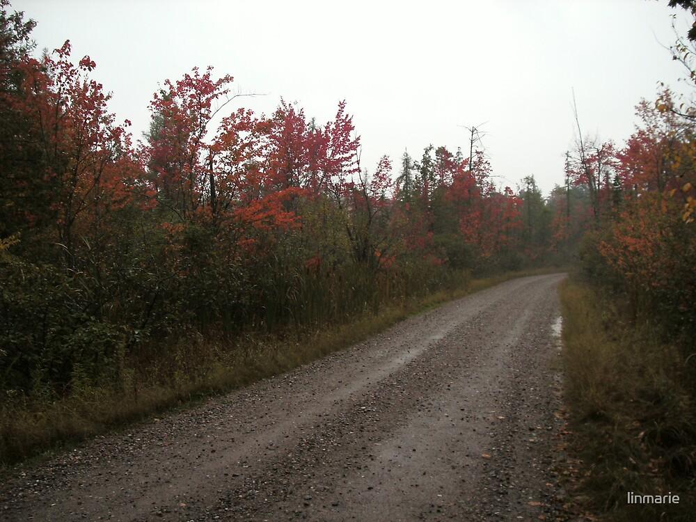 Road too Oblivion by linmarie