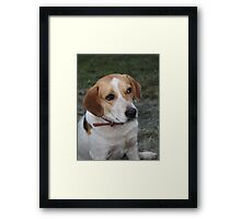 What??? Framed Print