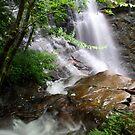 Soco Falls by Scarlett