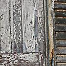 peeling paint/door by Lynne Prestebak