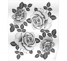 White Realistic Roses Poster