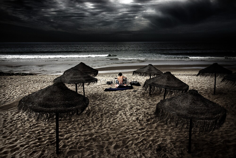 Beach Minstrel by ccaetano