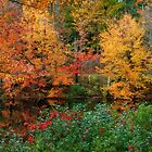 New England in Autumn by Jeff Palm Photography