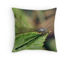 Resting Blue Throw Pillow