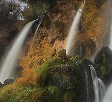 Rifle Falls by Steve  Taylor