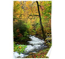 MIDDLE PRONG LITTLE RIVER,AUTUMN Poster