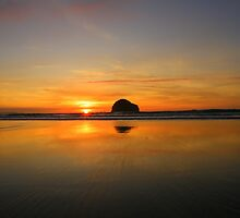 Cornwall: Wet Sand by Rob Parsons