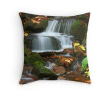 TRIBUTARY,MIDDLE PRONG LITTLE RIVER Throw Pillow