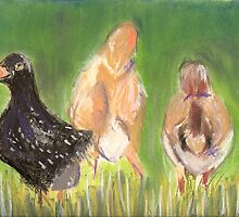Free Range by Amy Greenberg
